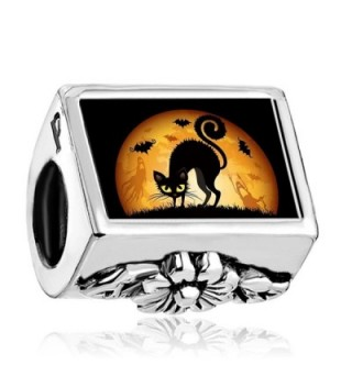 Charmed Craft Happy Halloween Charms Black Cat Charms Photo Charms Beads for Bracelets - CQ1862ERQC6