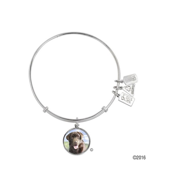 Wind and Fire Pet Collection Expandable Bangle with Pet Photo Charm - Chocolate Lab - C112KTQ7D4H