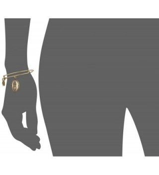 Alex Ani Pineapple Expandable Rafaelian in Women's Charms & Charm Bracelets