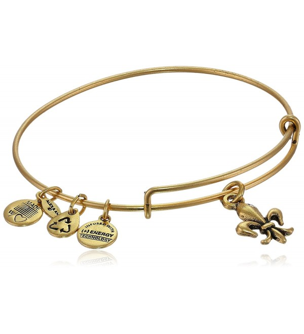 Alex and Ani Bangle Bar Fleur-de-Lis French Royalty Bangle - Rafaelian Gold Finish - CG118VNEBMX