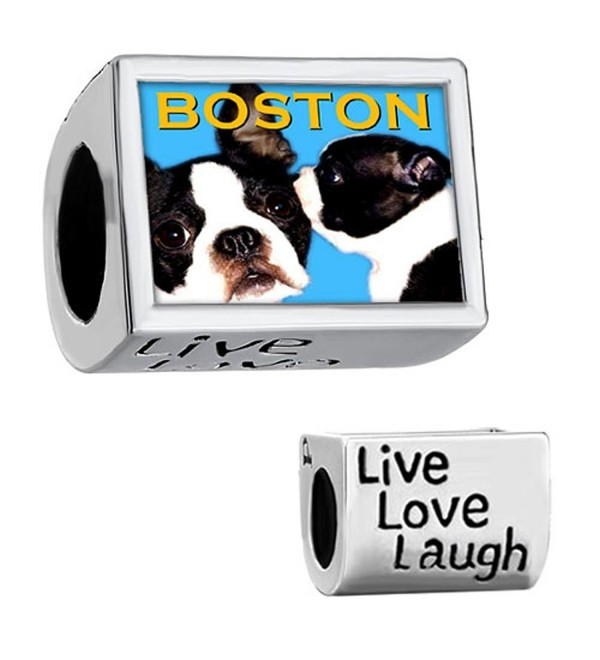 CharmSStory Boston Terrier Dog Silver Plated Charm Live Love Laugh Photo Beads For Bracelets - CZ11SEYKJ4X
