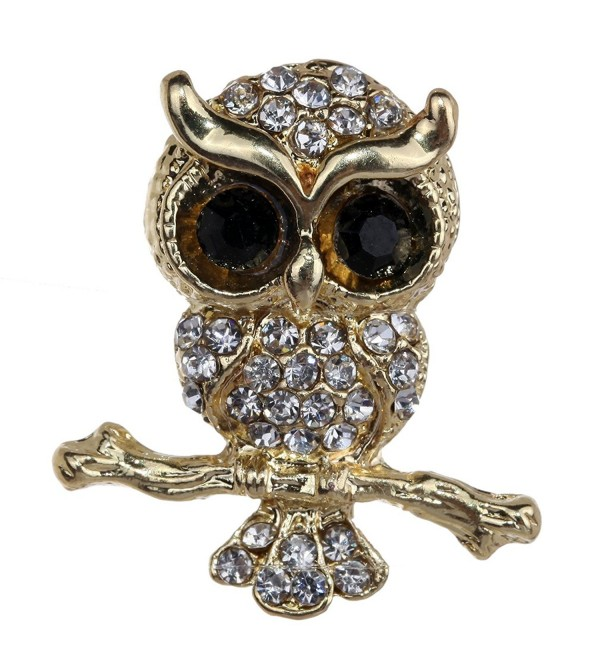 Yazilind Jewelry Gold Plated Champagne Crystal Cute Owl Brooches and Pins for Wedding Party - Colourless - CB11MWBPJNP