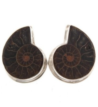 925 Sterling Silver Natural Fossil Madagascar Ammonite Clip-On Earrings - CS12G7XA1CB