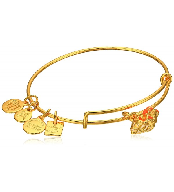 Alex and Ani Charity By Design Hermit Crab Expandable Gold-Tone Bangle Bracelet - CC12EPK41YD