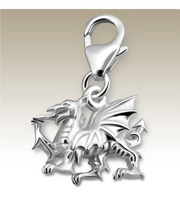 3D Dragon Charm with Lobster Clasp- Sterling Silver 925- for Charms Bracelet- Necklace (E14241) - CU11JY7BG87