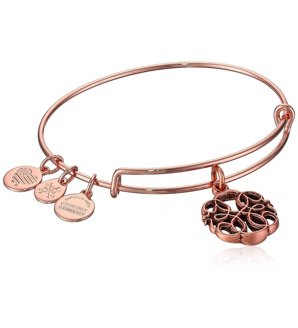 Alex and Ani Womens Path of Life Charm - Rose Gold - C71874AHS7N