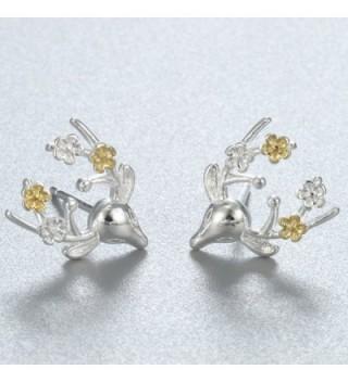 Earrings Earring Sterling Brincos Jewelry in Women's Stud Earrings