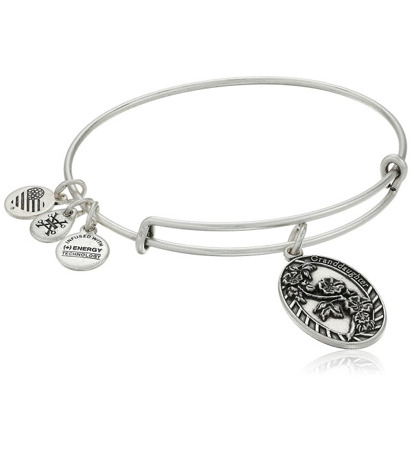 Alex and Ani Granddaughter Rafaelian Bangle Bracelet - Rafaelian Silver - CA12IBXGC7J