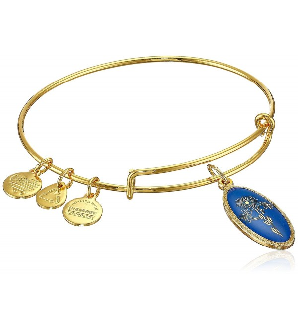 Alex and Ani Star of Mystery Aster Expandable Wire Bangle Bracelet - Yellow Gold - CZ11RV220KF