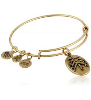 Alex and Ani Seven Swords III Expandable Rafaelian Bangle Bracelet - Rafaelian Gold - CI128Y5KMWP