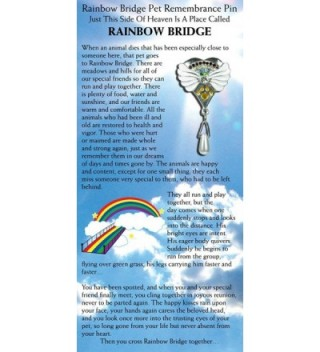 Rainbow Bridge Pet Memorial Pin