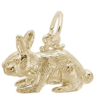 Rabbit Charm- Charms for Bracelets and Necklaces - C211JW1PTHJ
